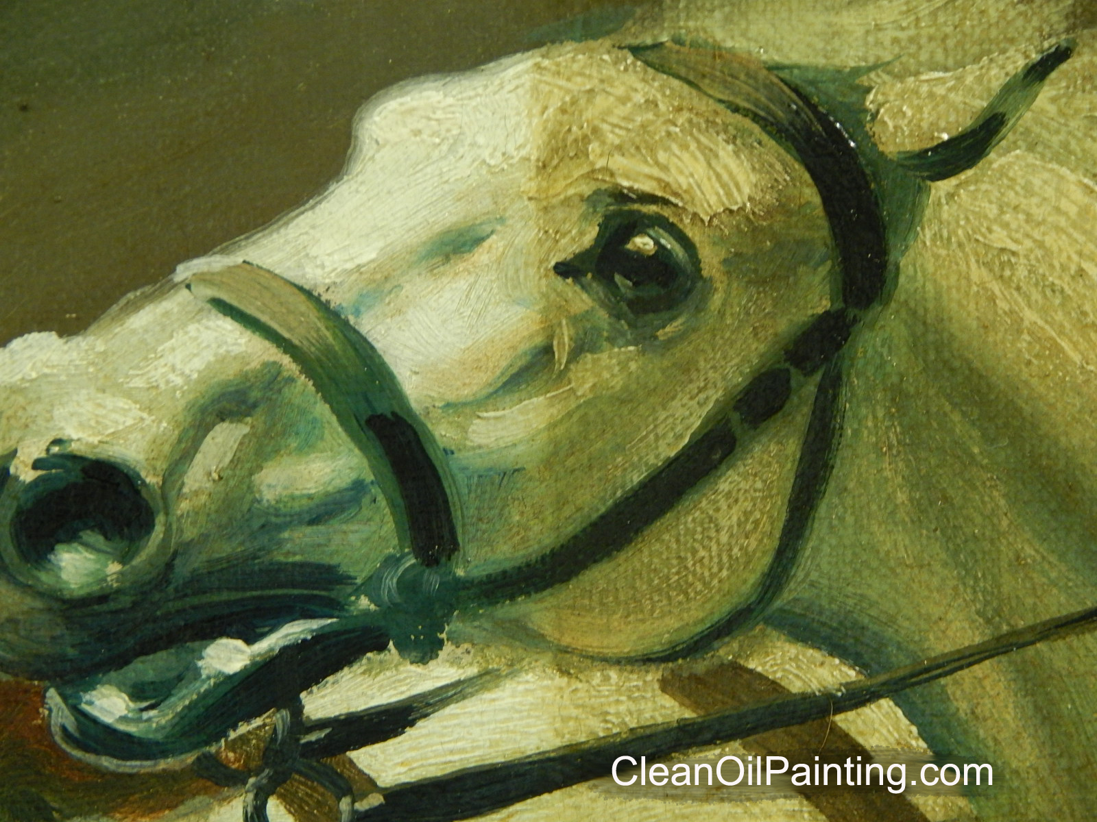 Art restoration painting of a horse partially cleaned solutioingenieria Gallery